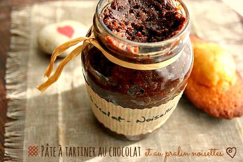pate-a-tartiner-chocolat-pralin